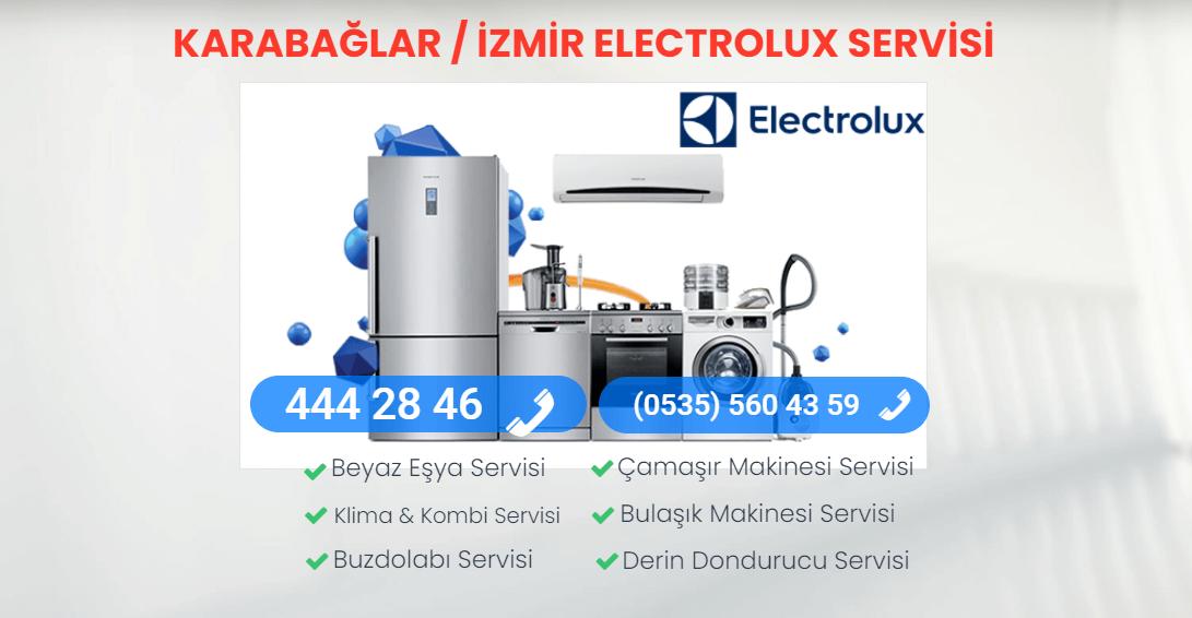 Electrolux Servisi Karabağlar