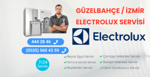 Güzelbahçe Elextrolux Servisi