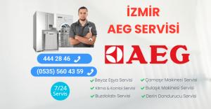 İzmir Aeg Servisi