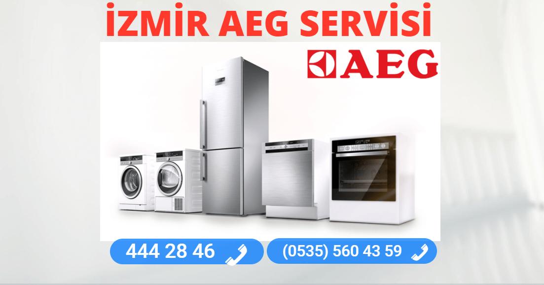 İzmir Aeg Teknik Servisi