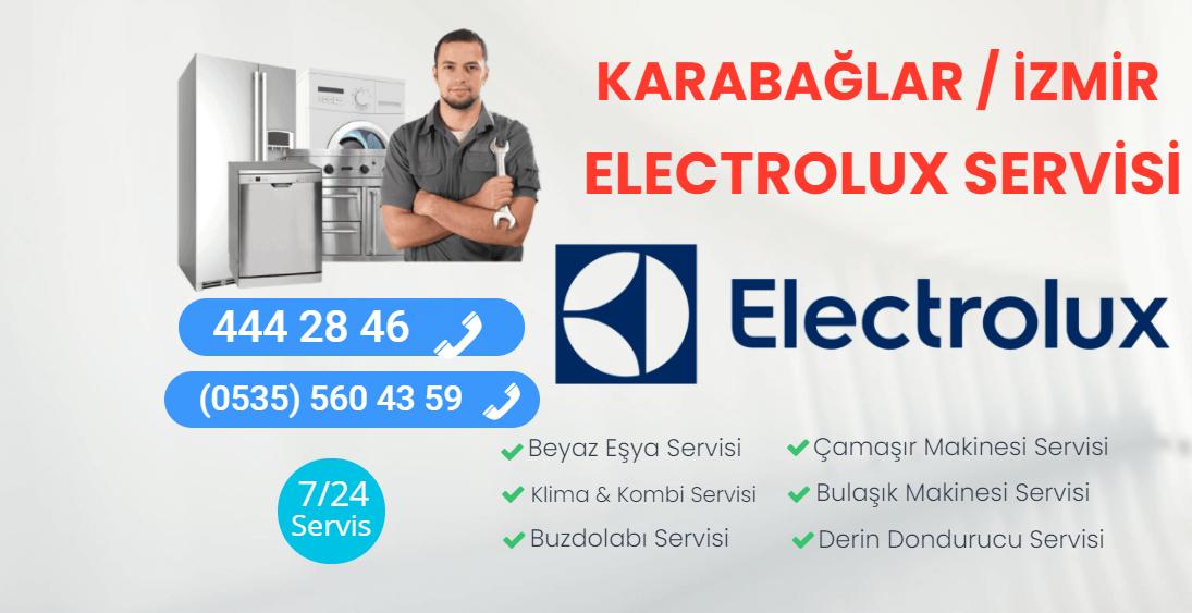 Karabağlar Electrolux Servisi