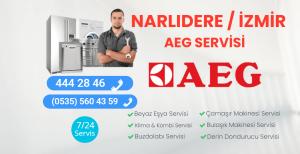 Narlıdere Aeg Servisi